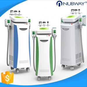 China CE/FDA approved cryo lipolysis device cryolipolysis anti freeze pads etg 50 machine fat removal machine on sale