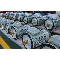 Quality 260RPM 185KW Permanent Magnet Motor , Asynchronous Servo Motor IP55 Grade wholesale