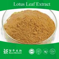 China Top quality lotus leaf powder p.e on sale