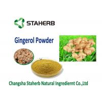 China organic ginger extract Vegetable Extract Powder Food addtive water soluble dry ginger powder on sale