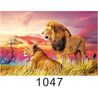 Quality Custom 3D Lenticular Printing 60*80cm / Wall Poster 3D Animals Photos wholesale