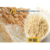 Buy cheap Non Allergen Lactose Free Rice Protein Nutrition For Healthy Food Addictive from wholesalers