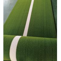 China Green Forever Sports Grass Mat For Gym / Pet Friendly Synthetic Grass on sale