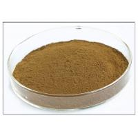 Quality Oleuropein 20% Natural Olive Leaf Extract For Dietary Supplement Brown Powder wholesale