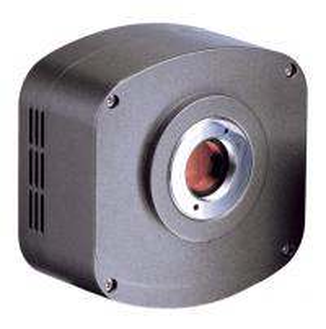 Quality Colorful / Mono USB2.0 CCD Digital Camera with 1.4MP 5.0MP 8.0MP CCD Image Sensor wholesale