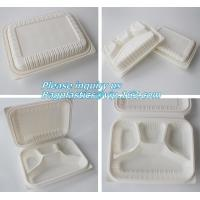 Quality blister packaging Packaging Tray, airline fast food trays with handle, cornstarch food trays wholesale