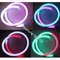 Quality color changing led christmas lights 14*26mm digital rope lights wholesale