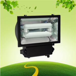 Quality Billboard IP65 200 Watt Induction Flood light For Building Landscape wholesale