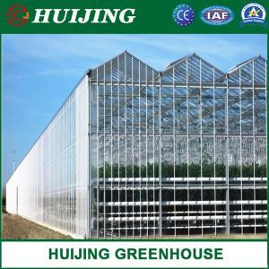 Quality Modern Design Glass/Plastic Greenhouse/ Multifunctional Greenhouse/Light Steel Greenhouse wholesale