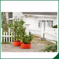 Quality Felt Weatherproof Plant Grow Bags For Home / Garden Grow Bags For Plants 12X24 Grow bags Felt material wholesale