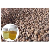 Quality Skin Moisturizing Natural Plant Extract Oil Camellia Tea Oil Cold Pressed Yellow Color wholesale