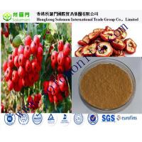 Quality China manufacturer of hawthorn extract free samples wholesale