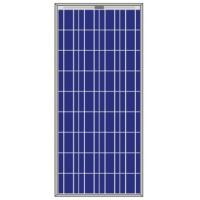 China 165W 156 Poly-crystalline Solar PV modules on sale
