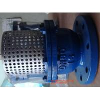 Quality Cast Iron Flange Strainer Foot Valve 8'' With Stainless Steel Screen wholesale