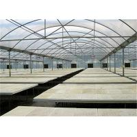 Quality Easy Installed Plastic Garden Greenhouse , Large Plastic Greenhouse For Tomato wholesale