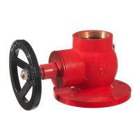 "Quality hot sale globle hydrant valve 2.5"" brass in red painting wholesale"