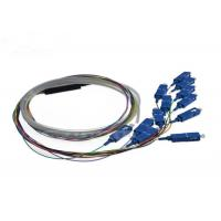 Quality Indoor 12 Core SC UPC Pigtail 1.5m With Splitter SC UPC Connector 0.9mm wholesale