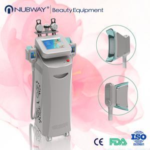 Quality vacuum cryo fat freeze / cryolipolysis fast slimming equipment wholesale