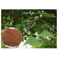 Quality Natural Plant Extract Prevent Cardiovascular diseases Ginkgo Biloba Leaf Extract EP Grade wholesale
