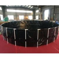 Quality Black 6000 Gallon Fish Tank , Ornamental Fish Breeding With Steel Frame wholesale