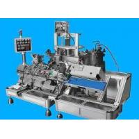 China Auto Cosmetic Mask Production Line on sale