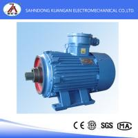 Quality YB High-voltage explosion-proof ac Induction Motors wholesale