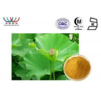 Quality Health Care Lotus Herbal Products , Organic Herbal Extracts Powder Food Grade wholesale