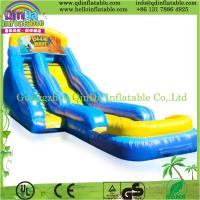 China Popular inflatable slide inflatable water slide,giant inflatable water slide for adult on sale