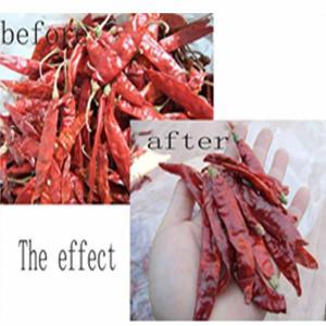 Quality Chili Stem cutting machine wholesale
