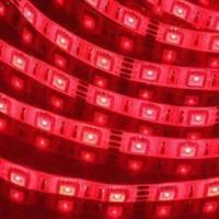 Quality RGB Flexible LED Strip Light with 12V DC Input Voltage and 72W Power Consumption wholesale