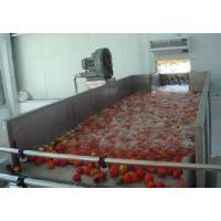 Quality Industrialized Fruit And Vegetable Processing Line For Date Washing And Elevator wholesale