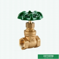 China Brass Threaded Gate Valve for Water Control PN16 on sale