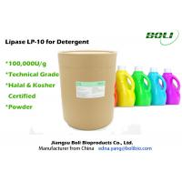 Quality Detergent Enzyme Powder Technical Grade , Lipase In Detergent For Leather And Silk wholesale