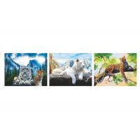Quality Wild Animal Flip Effect 3D Lenticular Printing Services PET/PP Lenticular Picture wholesale