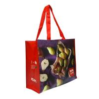 Quality Eco Handmade Non Woven Shopping Tote Laminated Grocery Bags For Women wholesale