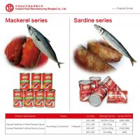 Quality Canned Sardines in Tomato Sauce/Brine 425gx24 Chinese Origin High Quality Manufactory Pric wholesale