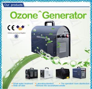 Professional Household Ultrapure Ozone Generator , car ozone machine / equipment