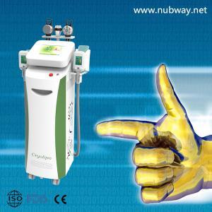 China cryolipolysis cavitation rf equipments on sale