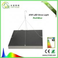 Quality Energy Saving Waterproof LED Plant Grow Lights / Hydroponic LED Grow Lights 3W - 120W wholesale