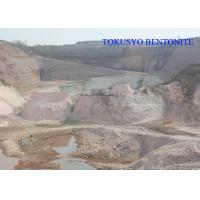 Quality Heat Resistance Sodium Bentonite , Casting and Foundry Bentonite Powder wholesale
