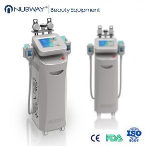 Quality cryolipolysis slimming equipment/price cryolipolysis/cryolipolysis fat freezing wholesale