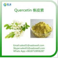 China Natural Sophora Japonica Extract Quercetin on sale