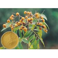 Quality Yellow Brown Powder Soapberry Extract Cosmetic Grade For Bath Cream / Shampoo wholesale