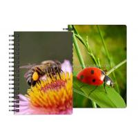 Quality 0.6mm PET Material 3D Lenticular Notebook For Office Stationery wholesale