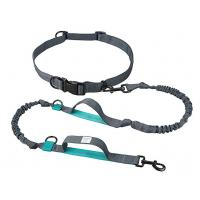 Quality Taotronics nylon reflective pet bungee dog leash wholesale