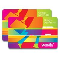 China  based smart cards on sale