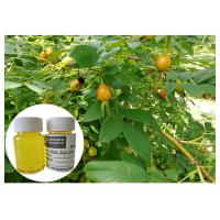 Quality Scar Removal Rosehip Fruit Oil Cold Pressing Yellow Color With Linolieic Acid wholesale