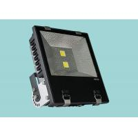Quality Heavy Duty Shell Commercial Outdoor Flood Lights , 120w Energy Saving Floodlights wholesale