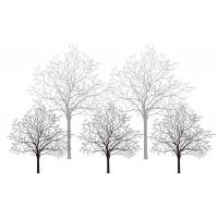 Quality Trees Bamboo Fiber Interior Decorative Wall Panels For Living Room Fireproof wholesale