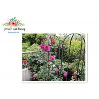 Quality Nursery House Garden Stake Solid Frame Flower Support Ushape Pipe wholesale